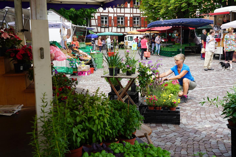 Wochenmarkt_W.Meyer