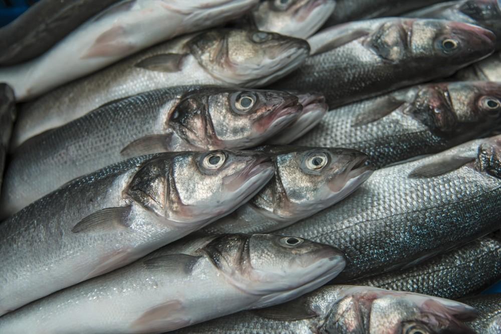 Markt-Fische
